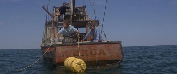Tubarão.Filme 8