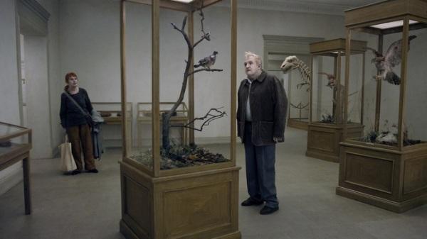 Um pombo pousou.Filme 11