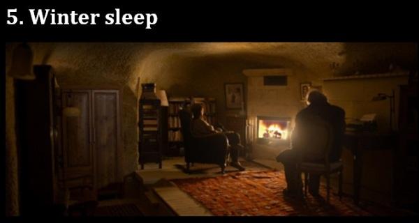 Melhores.5.Winter sleep